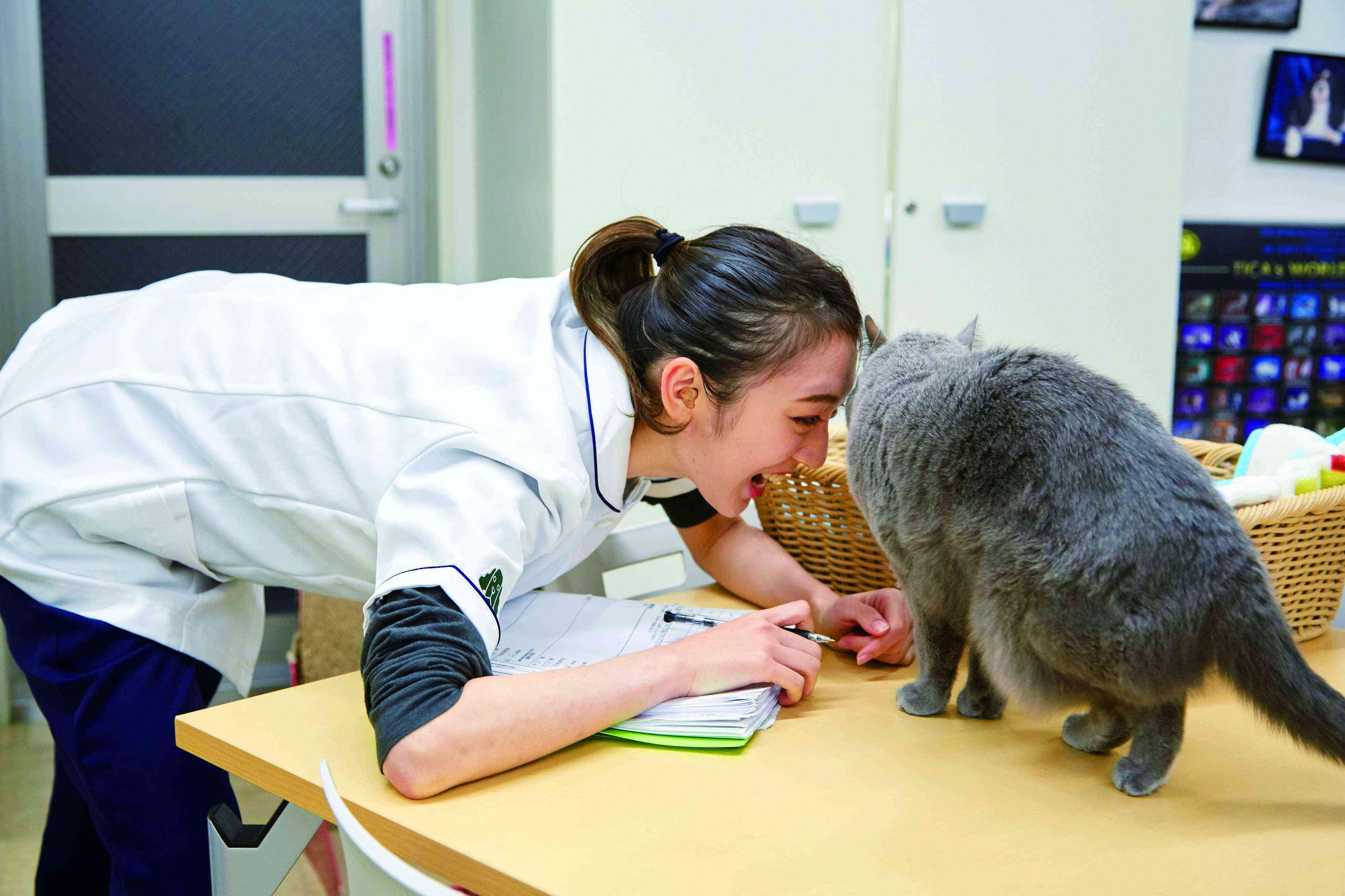 国際動物専門学校2