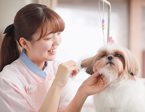 東京愛犬専門学校2