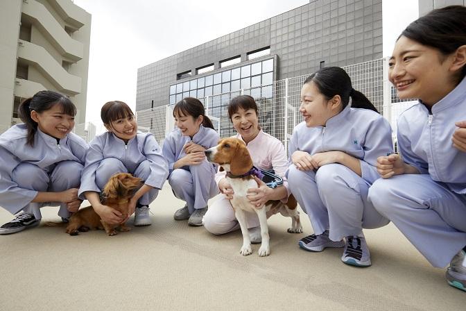 大阪ペピイ動物看護専門学校3