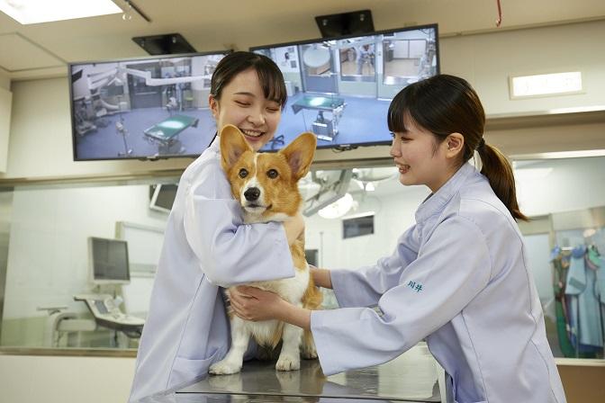 大阪ペピイ動物看護専門学校2