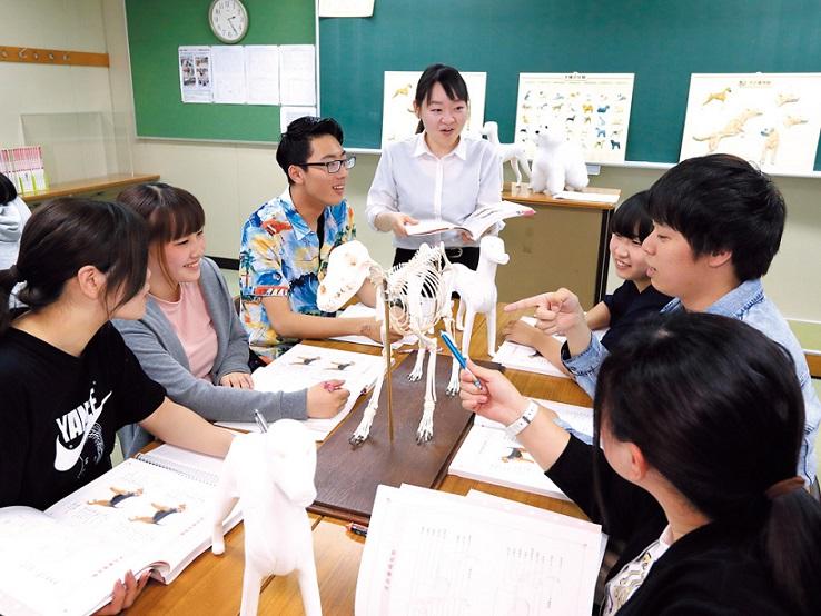 大阪動物専門学校2