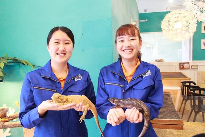 アジア動物専門学校2