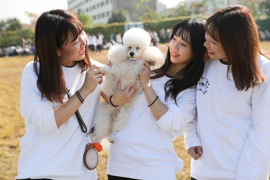 学校行事もたくさん。学内犬と一緒に運動会や旅行も行けます♪(2021年度の開催は未定です)