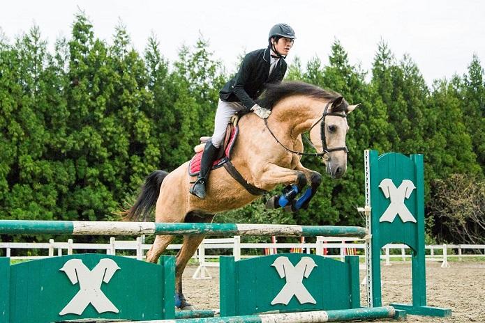 【ホースプロコース】全国で唯一 通学しながら馬を学べる専門学校で馬のプロになる!