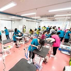 東京ブレーメン動物専門学校4