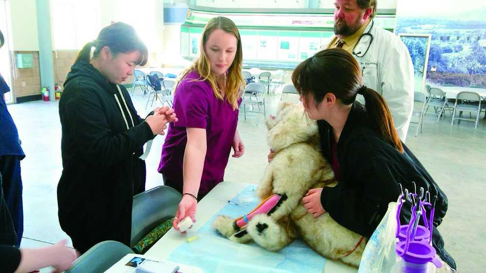 海外研修も開催!アメリカ・イギリス・オーストラリアと動物先進国で学ぶ海外の動物福祉の心などを現地で学びます!(希望者のみ自由参加)