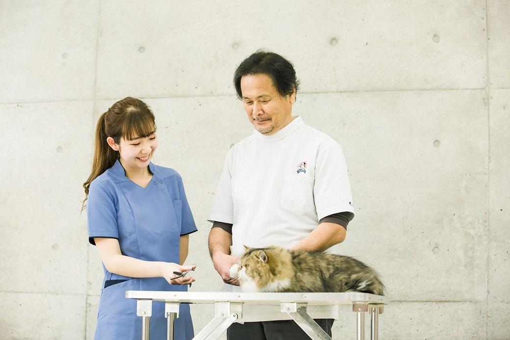 専門学校ちば愛犬動物フラワー学園4