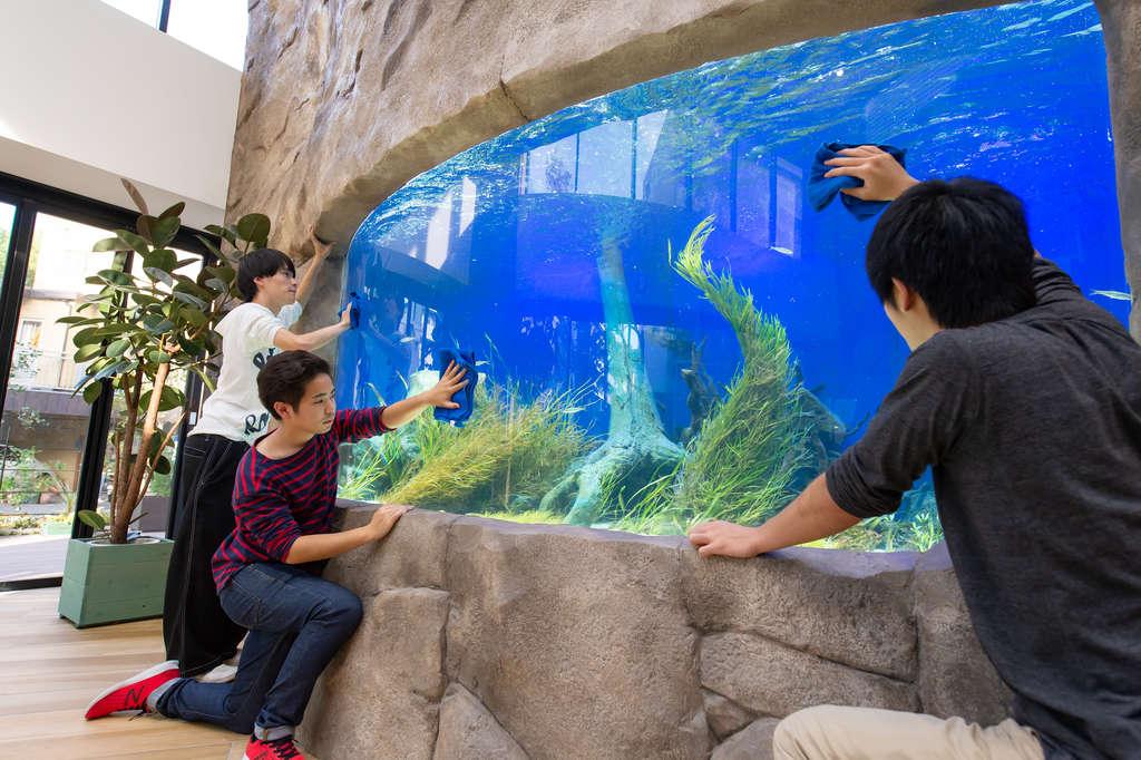 TCA ECOが誇る4m水槽です。実際に水族館にあるものと非常に近い設備になっています。