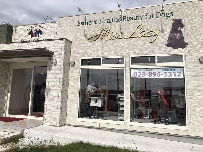 系列実習施設 Esthetic Health&Beauty for Dogs Miss Lacy (エステティックヘルスアンドビュティフォードッグミスレーシー)で実習が出来ます。