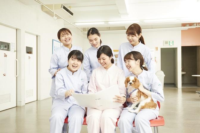 困ったときはクラス担任がサポート ペピイでは、クラス担任制。動物病院での豊富な経験がある動物看護師が担任を務めます。 学生との距離が近いクラス担任制だから、理解するまで丁寧に指導!学生たちは着実に力が付きます。
